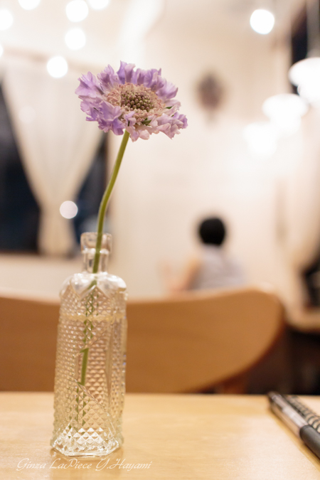 花のある風景 テーブルのスカビオサ_b0133053_033577.jpg