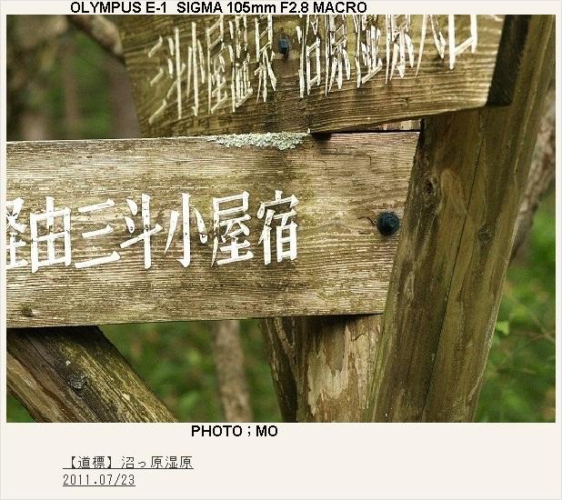 c0185705_1164578.jpg
