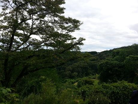 徳島から岡山へ移動して・・・_c0226146_16472960.jpg