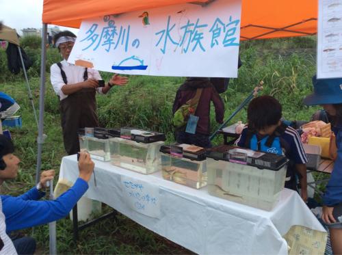 2015年8月29日『夏の多摩川チャレンジ』多摩川水族館_c0091679_12523470.jpg