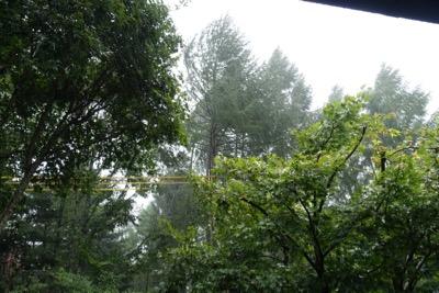 台風の影響で大雨_d0133485_1245611.jpg
