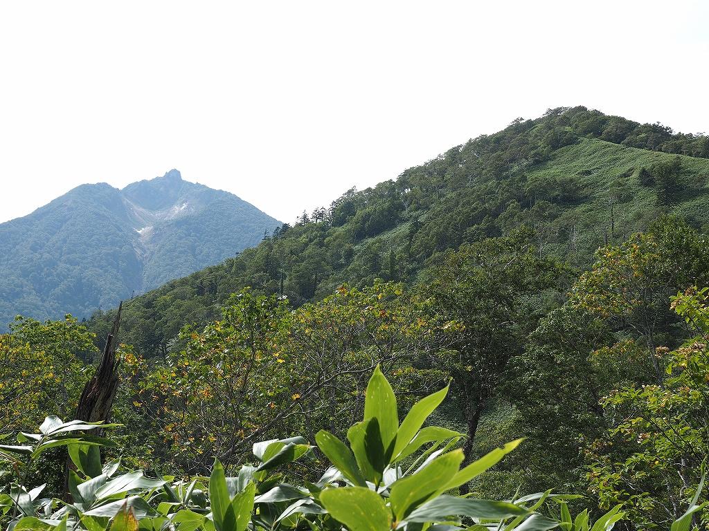 イチャンコッペ山、9月8日_f0138096_2145562.jpg