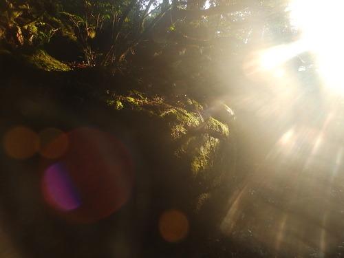 天柱石の夜明け_b0160957_13493310.jpg