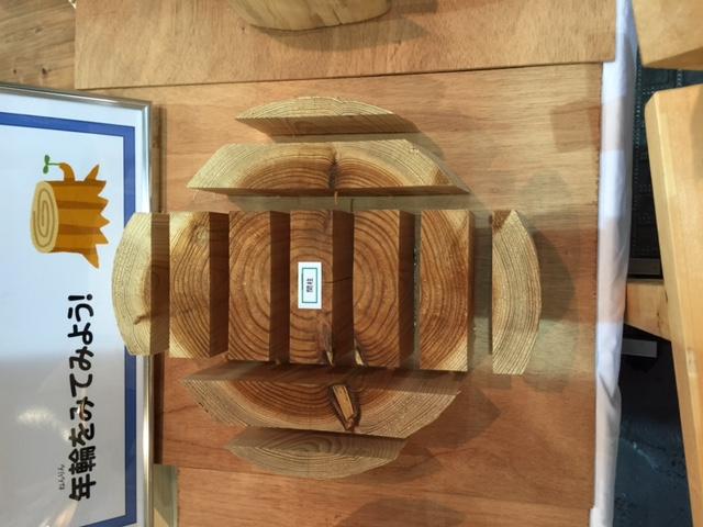 丸太の木取り_f0052181_17234062.jpg