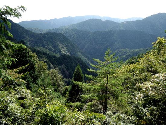 北山の渓_e0048413_19492813.jpg