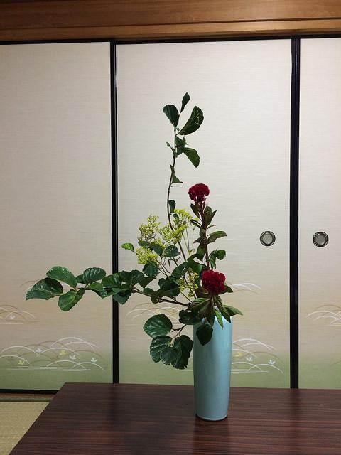 9/9のお花:万作、鶏頭、おみなえし_b0042538_22485016.jpg