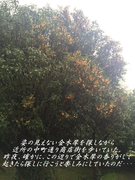 c0283778_1530766.jpg