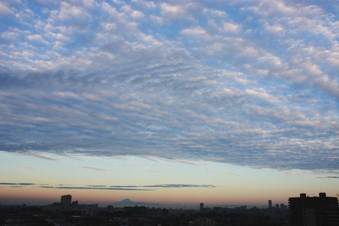 層状雲 (高積雲) : 日々の風景