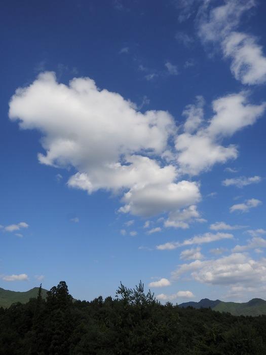 青空に白い雲_c0116915_017565.jpg