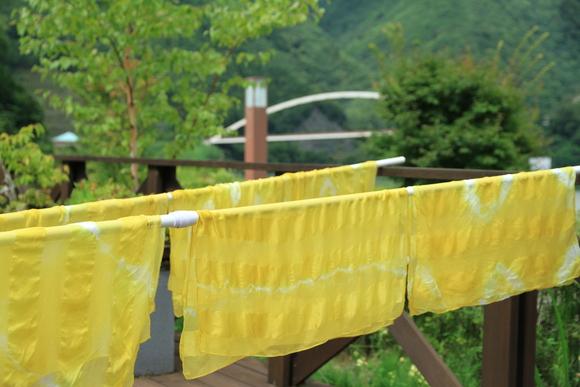 シルクの黄色染め・・・_b0100253_13555358.jpg