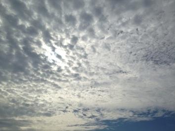 新月前の秋空***_e0290872_19533604.jpg