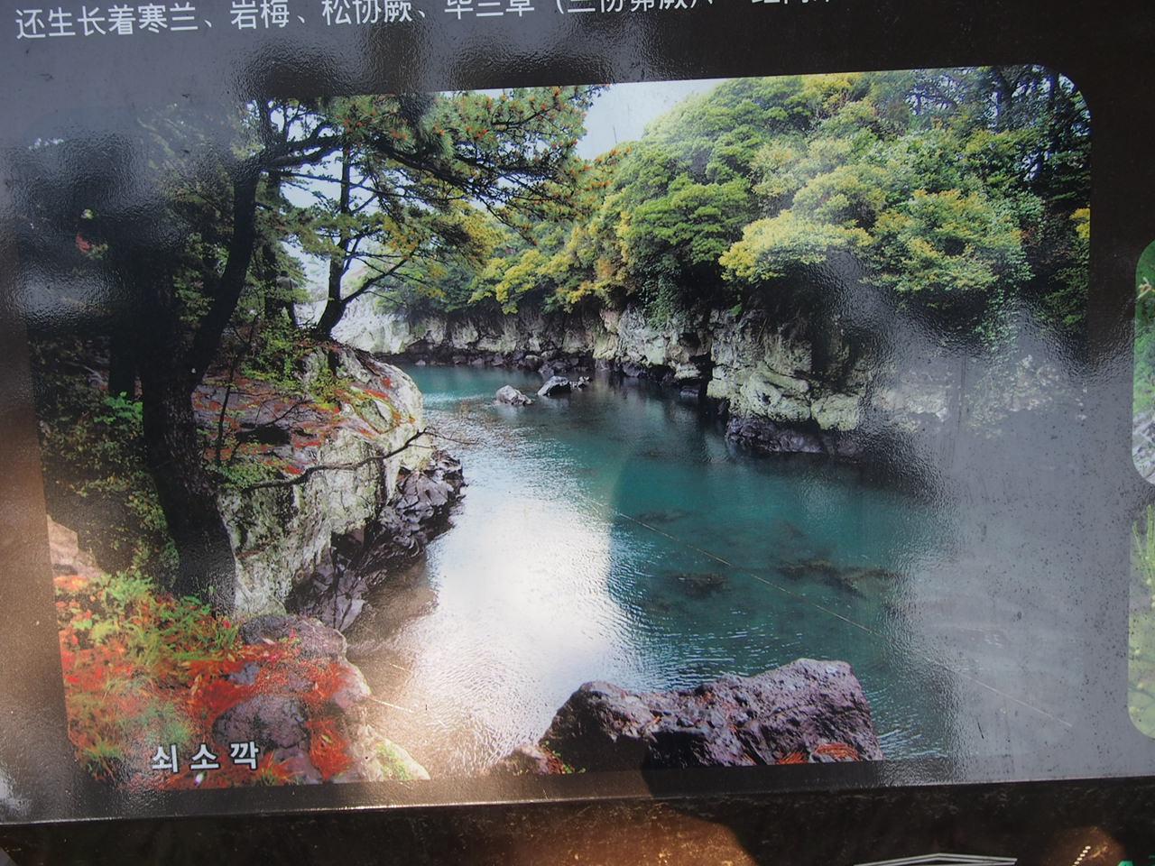 f0152079_20112612.jpg
