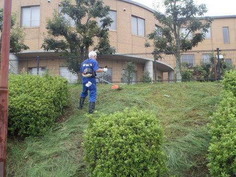 プール敷地内の草刈りを行いました。_c0184994_18271902.jpg