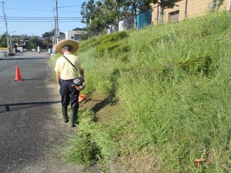 プール敷地内の草刈りを行いました。_c0184994_18304029.jpg
