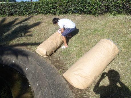 プール敷地内の草刈りを行いました。_c0184994_18475101.jpg