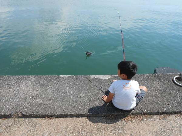 新和歌浦漁港_c0367107_15342901.jpg