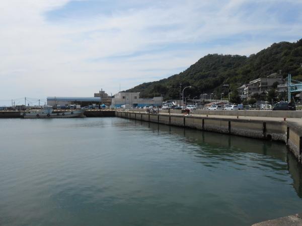 新和歌浦漁港_c0367107_15585721.jpg