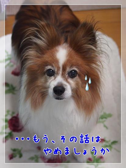 d0013149_22381094.jpg