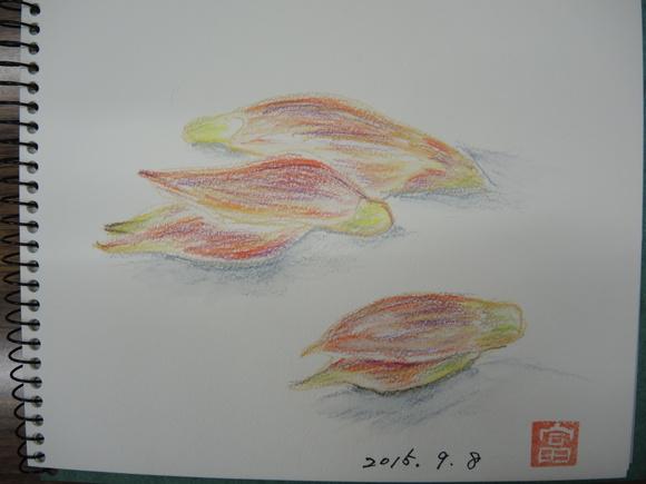 e0266366_10461395.jpg