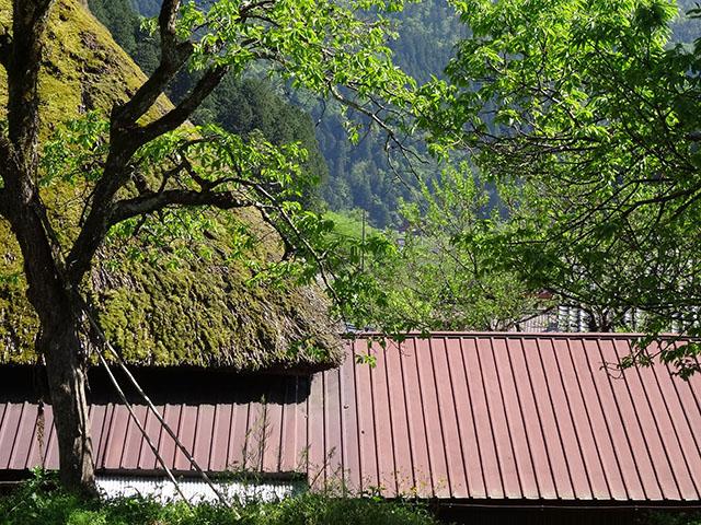 京都舞鶴〜美山ツーリング_e0173183_222066.jpg