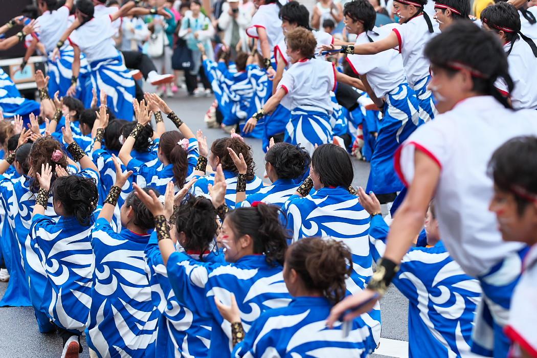 名古屋大学 快踊乱舞@第17回にっぽんど真ん中祭り_c0187584_11551875.jpg