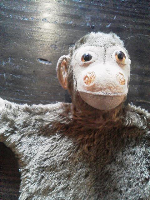 お猿の指人形_e0350308_7401529.jpg