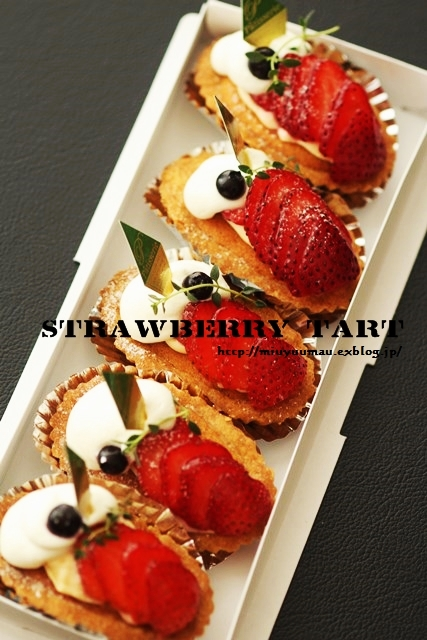 Happy Birthday! 12歳_d0173942_203889.jpg