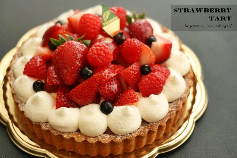 Happy Birthday! 12歳_d0173942_206822.jpg