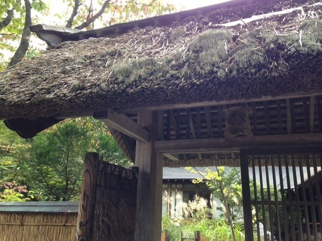紅桜公園 べにざくら本館_b0236665_23170819.jpg