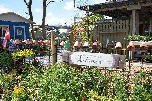 秋のお庭でOBENTOU_b0137969_06183632.jpg