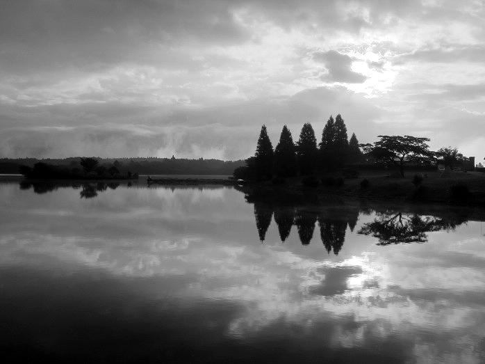 Lake Tanuki_b0145601_2392690.jpg