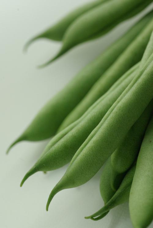 まだ、野菜三昧_f0155808_2125764.jpg