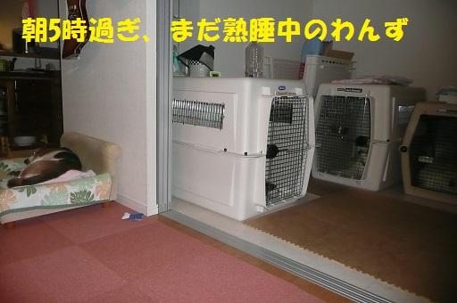f0121712_8263799.jpg