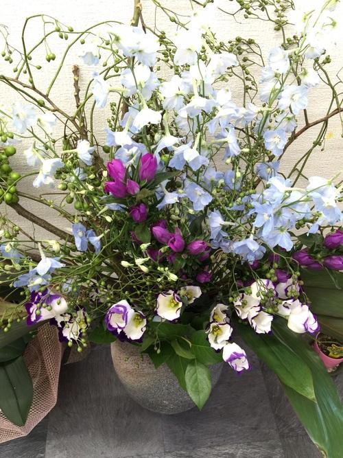 今週のお花とお知らせ_a0200423_14323211.jpg