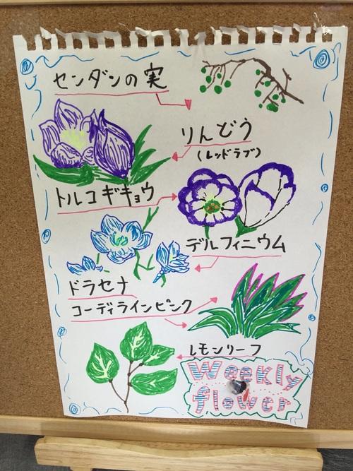 今週のお花とお知らせ_a0200423_14375588.jpg