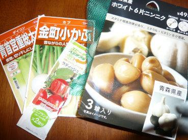 種を買う  _c0365341_22304989.jpg