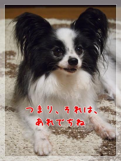 d0013149_2310131.jpg