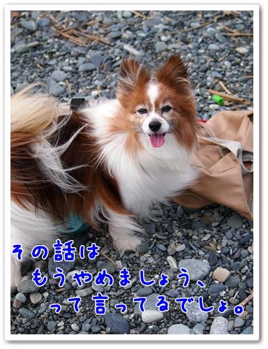 d0013149_2328846.jpg
