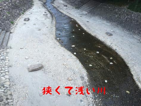c0343364_14384485.jpg