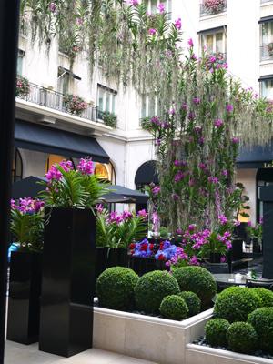 Four Seasons Hotel George V Paris ♪_d0113182_0312996.jpg