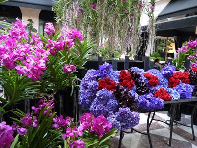 Four Seasons Hotel George V Paris ♪_d0113182_0314330.jpg