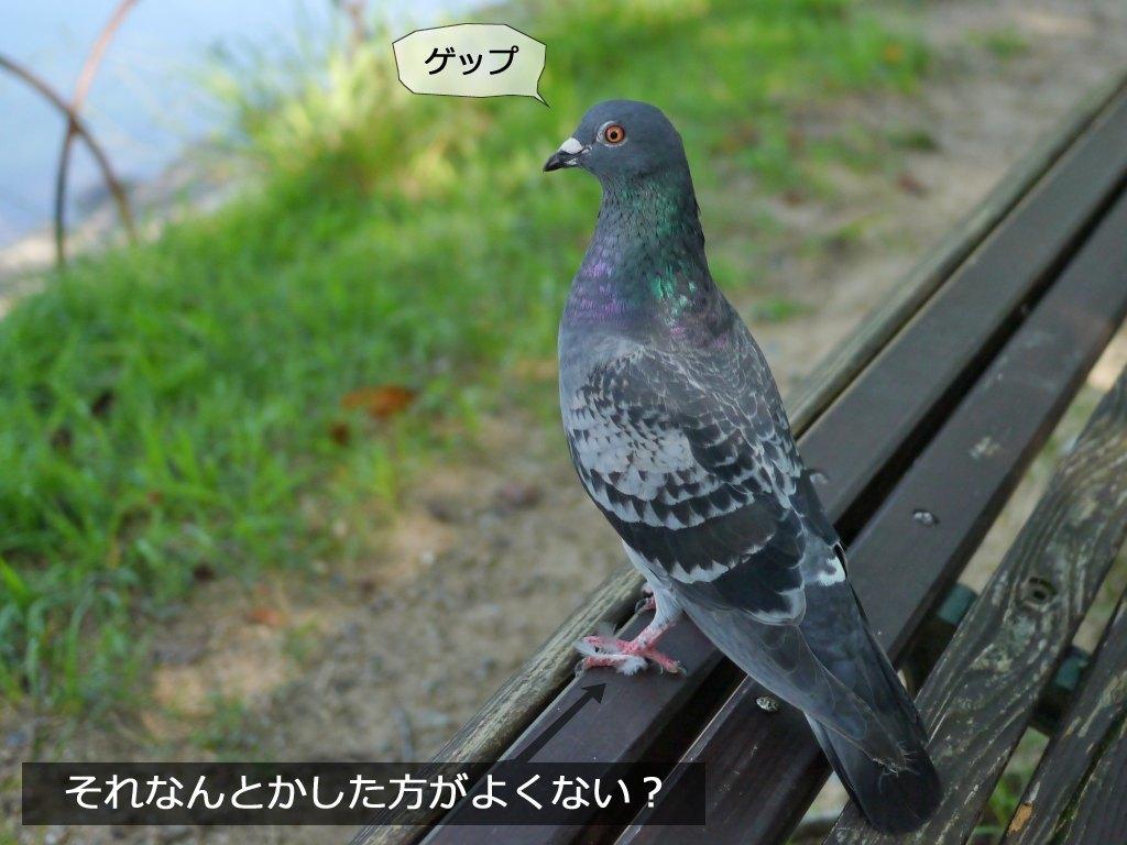 b0174191_20030367.jpg