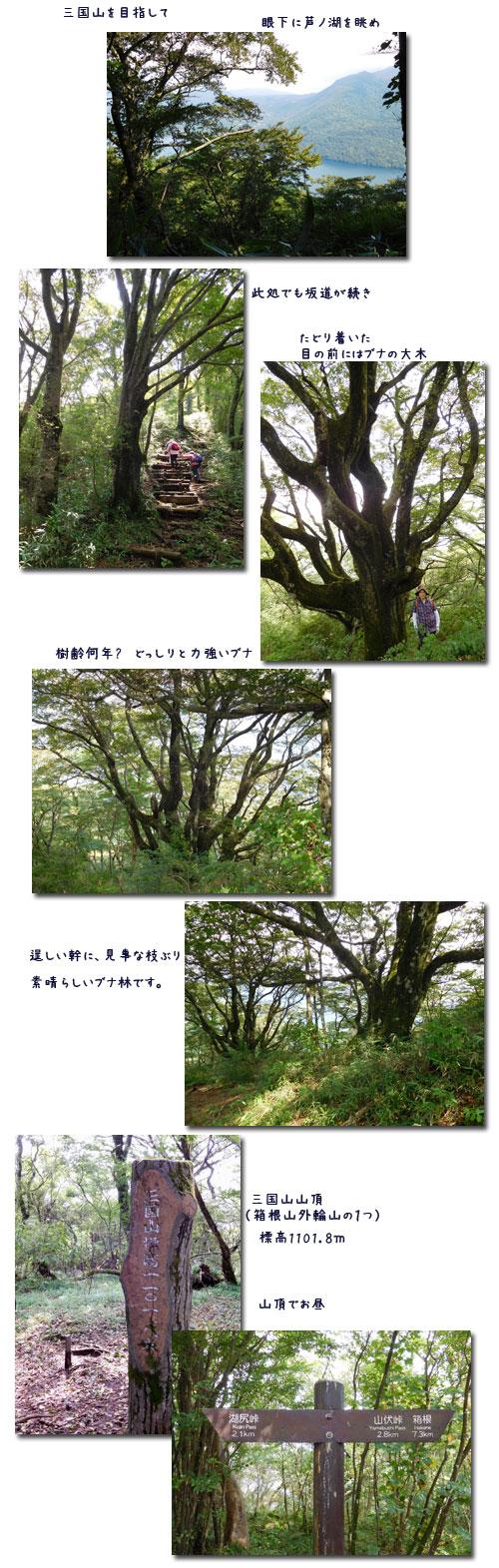 箱根三国山へ_c0051105_210656.jpg