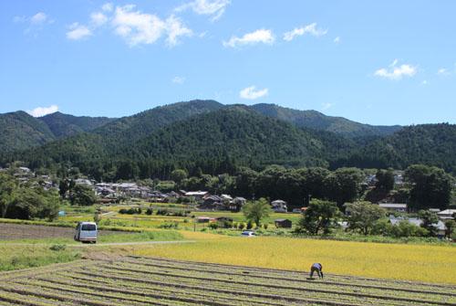 大原の里 農作業風景_e0048413_21422559.jpg