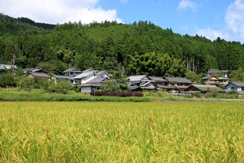 大原の里 農作業風景_e0048413_2142559.jpg