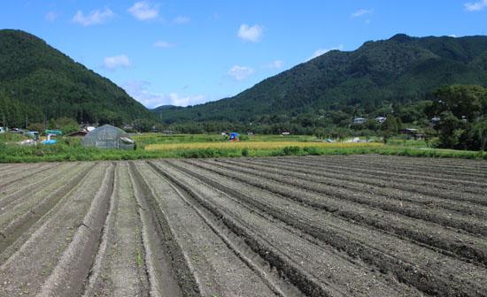 大原の里 農作業風景_e0048413_21434627.jpg