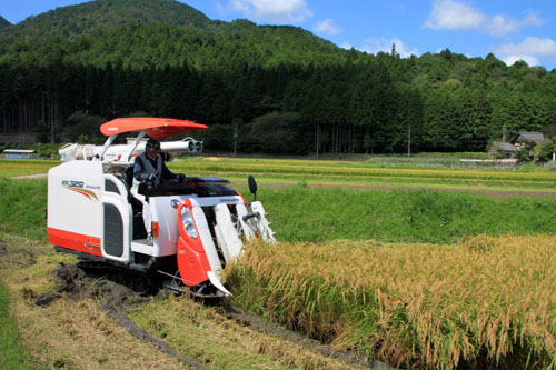 大原の里 農作業風景_e0048413_21442389.jpg