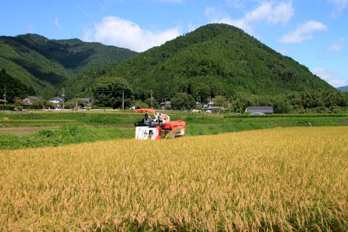 大原の里 農作業風景_e0048413_2144891.jpg