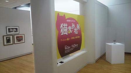 作業日誌(猫まみれ展帯広展陳列作業)_c0251346_1515272.jpg