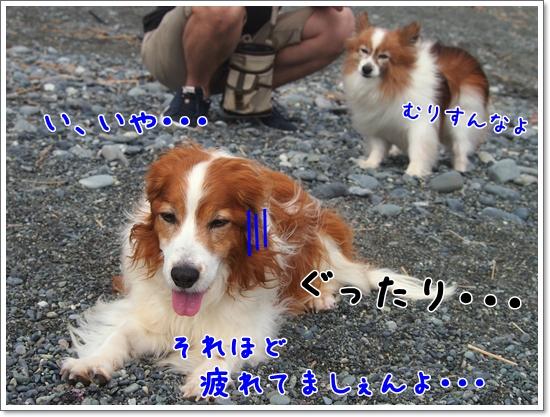 d0013149_0222489.jpg